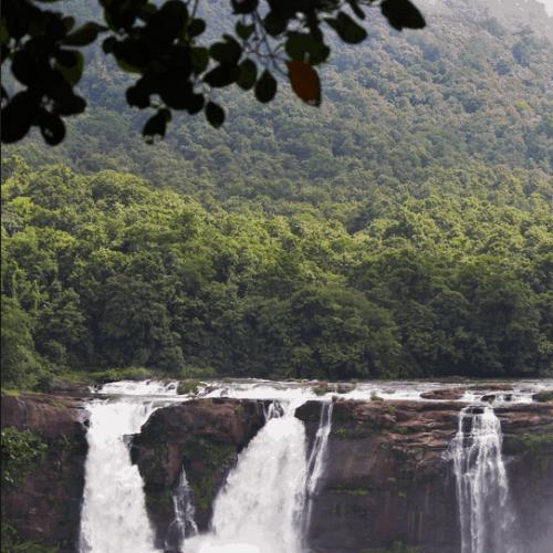 Plan d'actions locales de la Guyane pour la Stratégie Nationale de la Biodiversité
