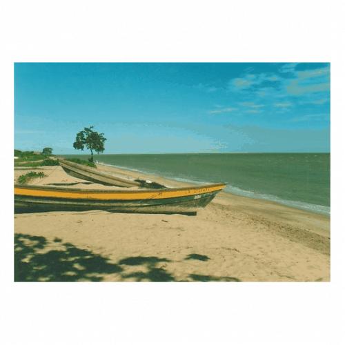 Ethnicité, pouvoir et développement politique chez les Galibis de la Guyane française